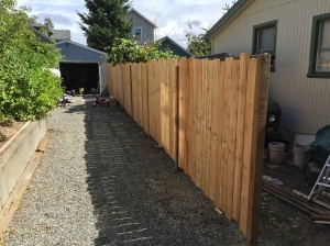 Pinne Fence 2