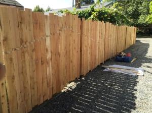 Pinne Fence 3